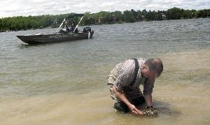 Biologist discovers how to kill zebra mussels